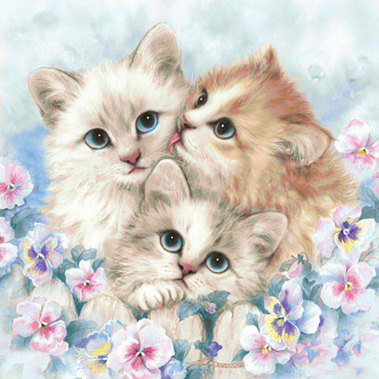 объясняется картинки котят красивого формата лучше