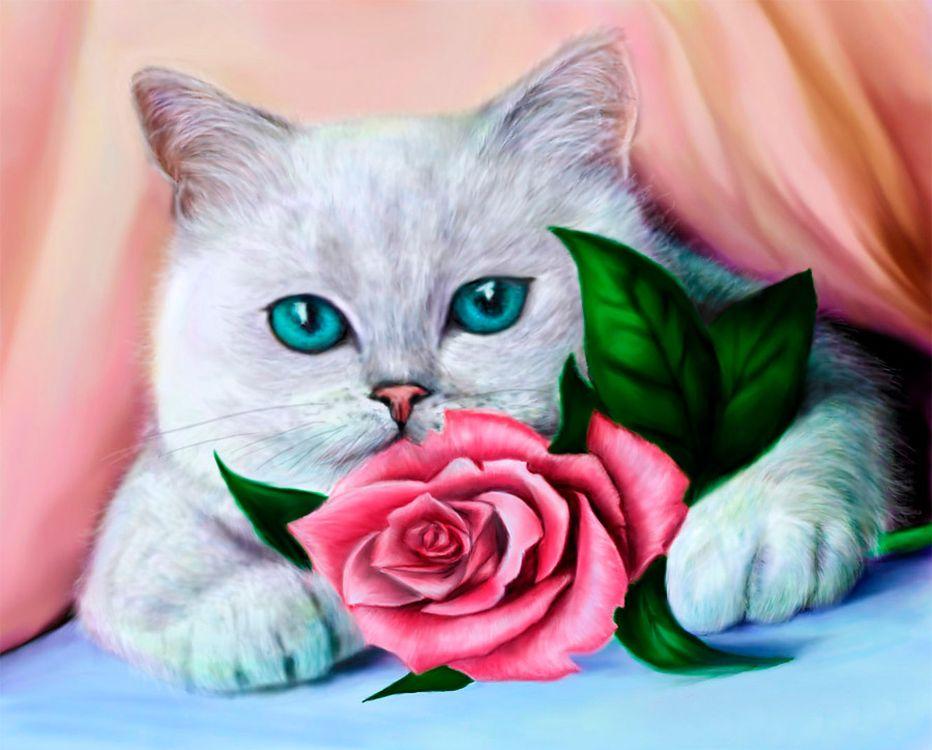 Купить Алмазная вышивка «Кот и роза», Алмазное Хобби, Россия, 30x40 см, Ah5332