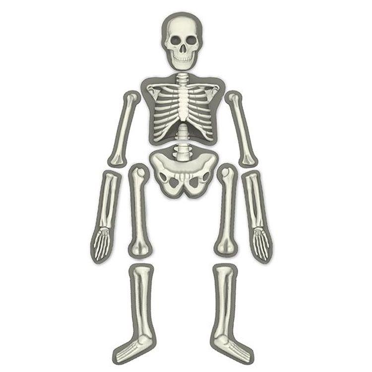 сучка картинки какие бывают скелеты поддон транспортная тара