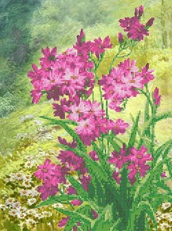 Купить Рисунок на ткани «Луговые цветы», Каролинка, 27x36, 5 см, ТКБЦ 3039