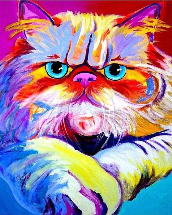 Купить Картина по номерам «Пестрый кот», Paintboy (Premium), 40x50 см, VA-1060