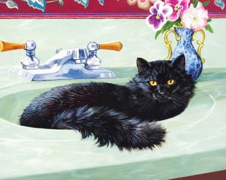 Купить Картина по номерам «Кот в раковине», Paintboy (Premium), 40x50 см, VA-1251